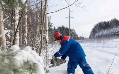 Вальщик леса 5 разряда, 3 уровень квалификации, повышение квалификации